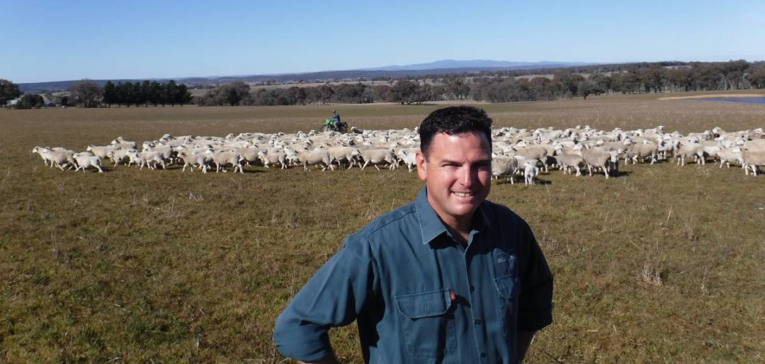 "Aa STEPHEN Leisk, ""Oxenthorpe"", northwest of Molong, is in the middle of an eight year composting program that is literally transforming his land from quite marginal country, to a viable farm."