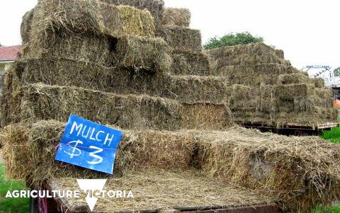 Composting wet hay