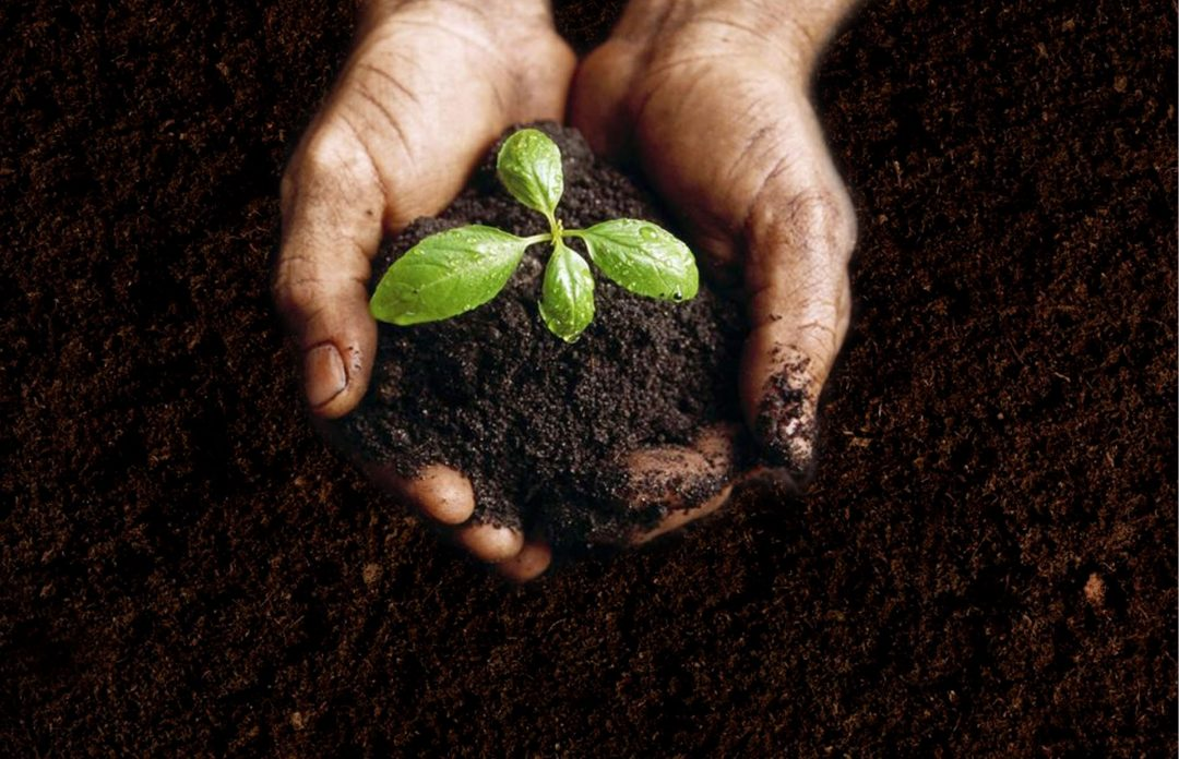 What's Composting ?