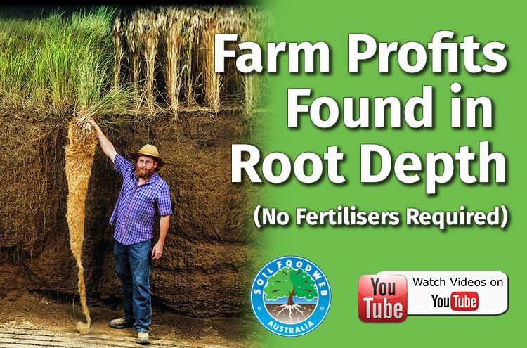 Farm Profits in Root Depth
