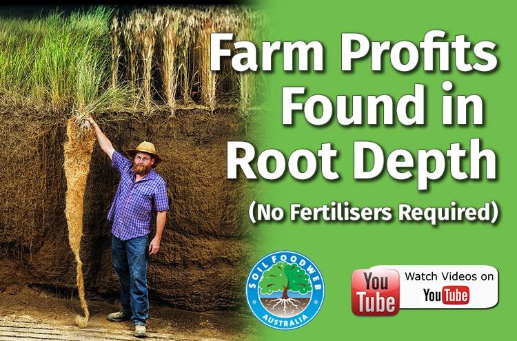 Farm Profits in Root Depth