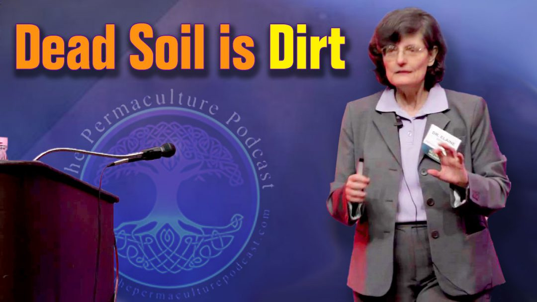 Dead Soil is Dirt