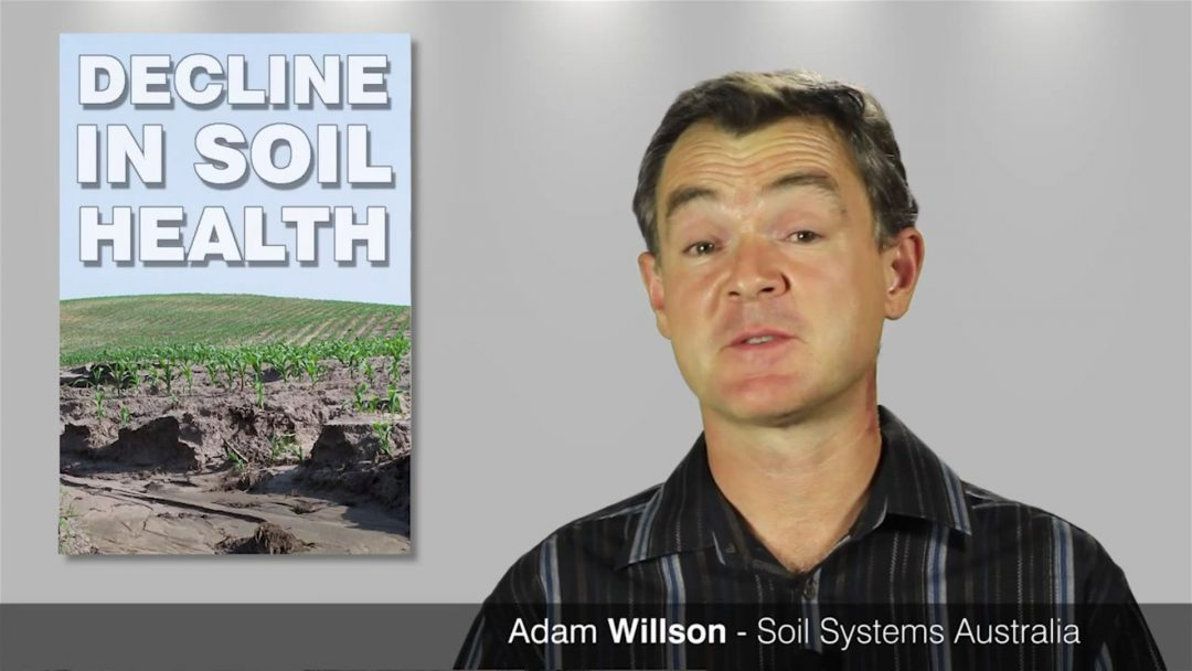 Adam Willson from Soil Systems Australia, talks about the decline in Australian soil health