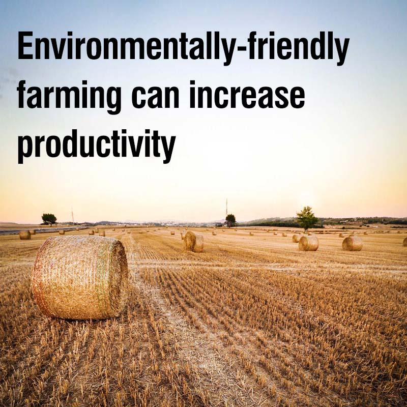 environmentally-friendly farming can increase productivity