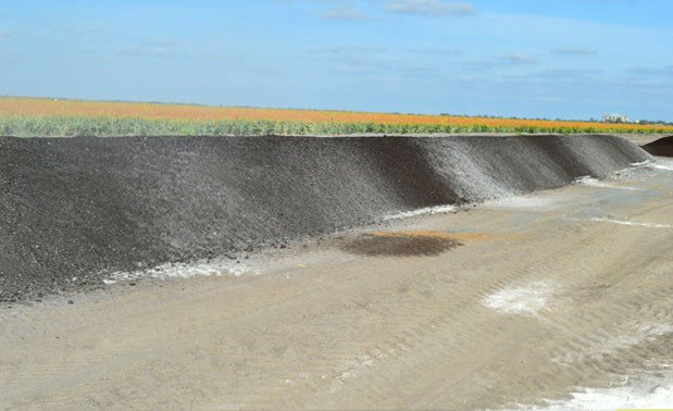Windrow after one incorporation pass